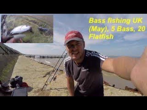 Bass Fishing UK (May), 5 Bass, 20 Flatfish & 50 Crabs, Bass Fishing