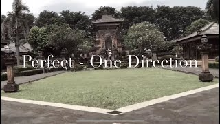 Perfect - One Direction (cover)