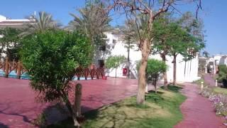 Шарм-эль-Шейх отель Hilton Dream resort территория