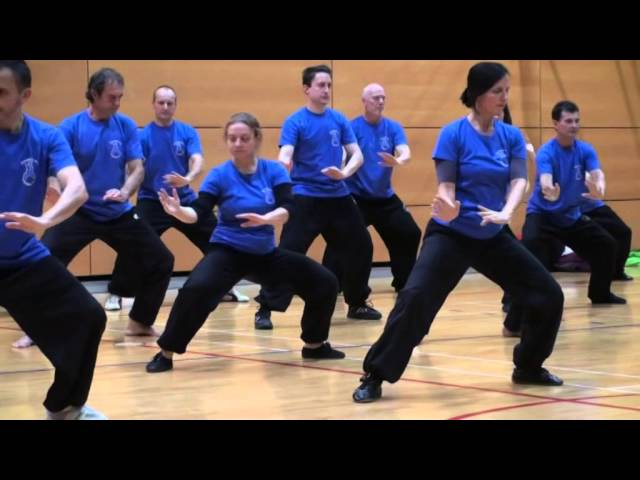 Master Fu Nengbin in Slovenia 2014
