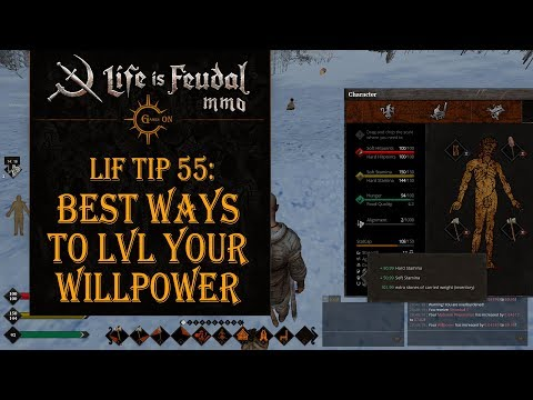 LiF Tip 55: Best ways to lvl your WillPower