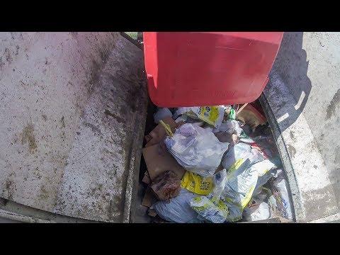Garbage Truck Hopper Action: Wayne Curbtender