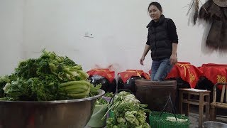 农村姑娘用脚踩雪菜,这种独特的腌制方法,你见过吗?