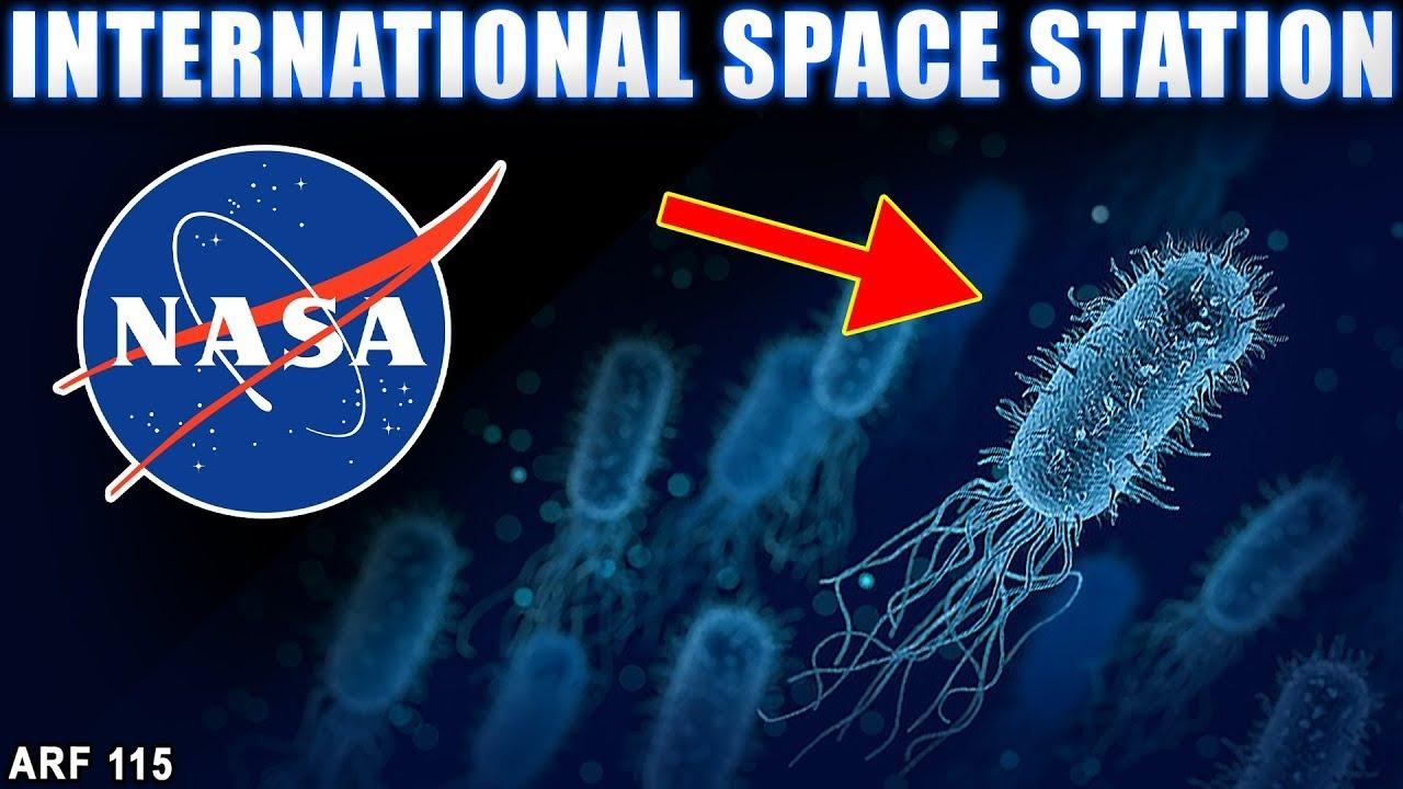 NASA की टेंशन शुरू | Dirty Bacteria Found Inside ...