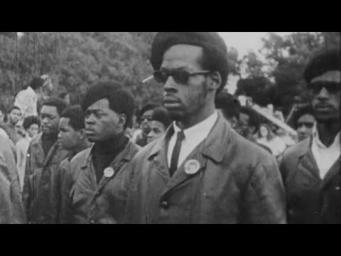 Who Were The Black Panthers? It