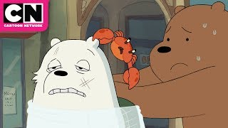 We Bare Bears | Ice Bear Goes To The Hospital | Cartoon Network