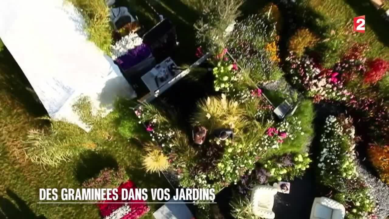 Jardin des gramin es dans vos jardins 2015 07 11 youtube - Jardin de graminees photos ...