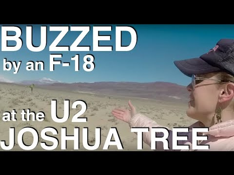 Buzzed by an F 18 while visiting the site of the famous Joshua tree where U2 shot the photos for the