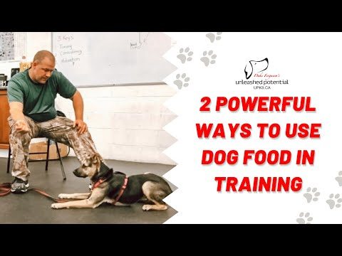 LAZY DOG TRAINER Vll / Two Powerful Ways To Use Food In Dog Training / Create a Thinking Dog