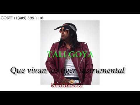 Que Vivan Los Tiger (instrumental)