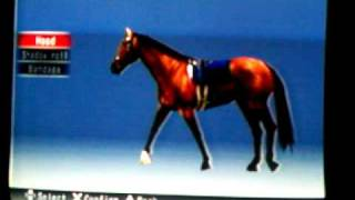 How to play Gallop Racer 2006 for Playstation 2