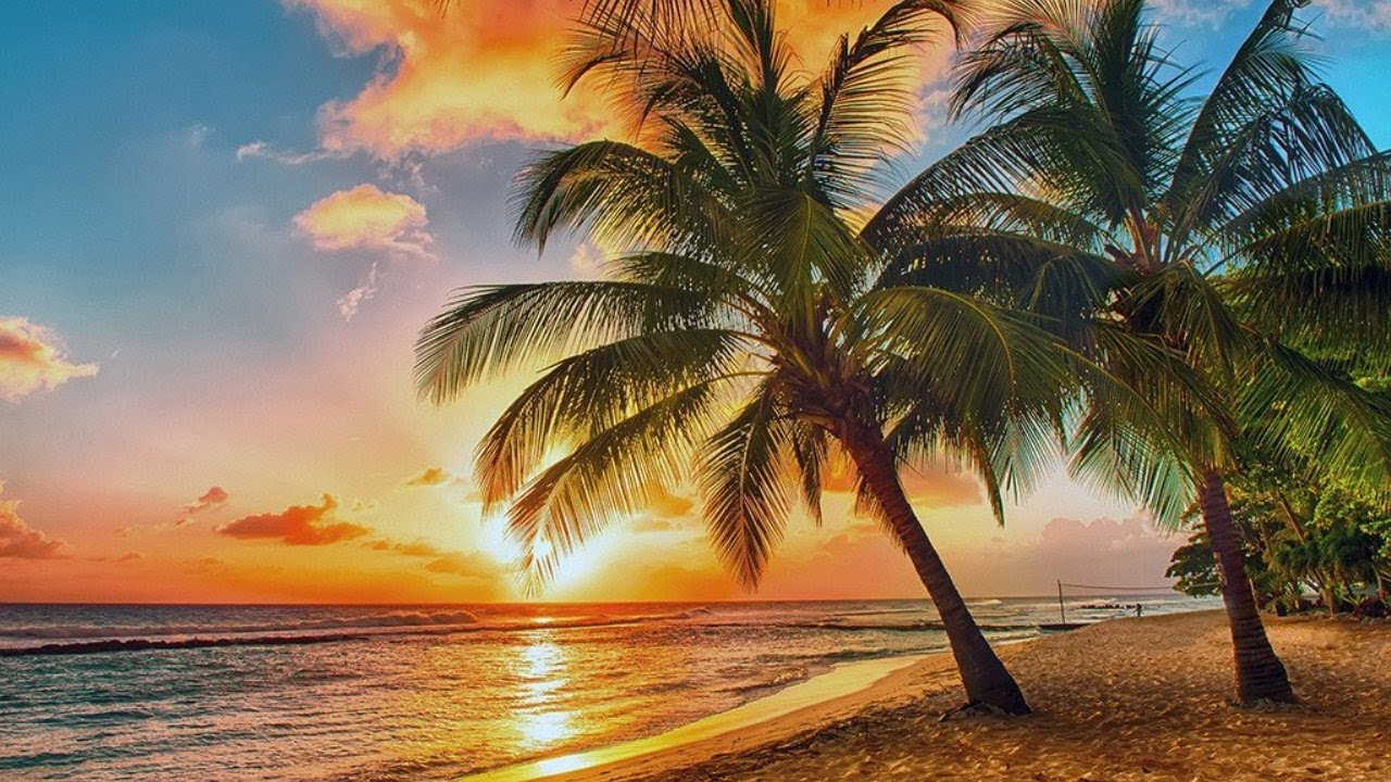 Tropical - Summer and Upbeat Background Music For Videos (Royalty Free  Music) - by AShamaluevMusic