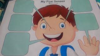 5 Senses Activity for Preschooler