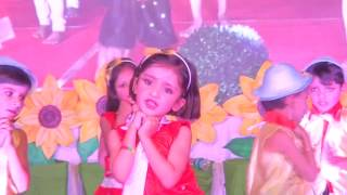 Sorry Sorry Sorry Dance Annual Function NCHS Sironj