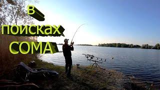 Рыбалка с ночевкой на СОМА Ловля сома с берега ДОНКА