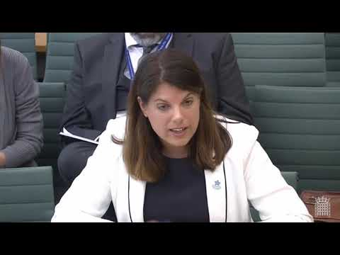 Passport processes: Immigration Minister Caroline Nokes questioned by MPs