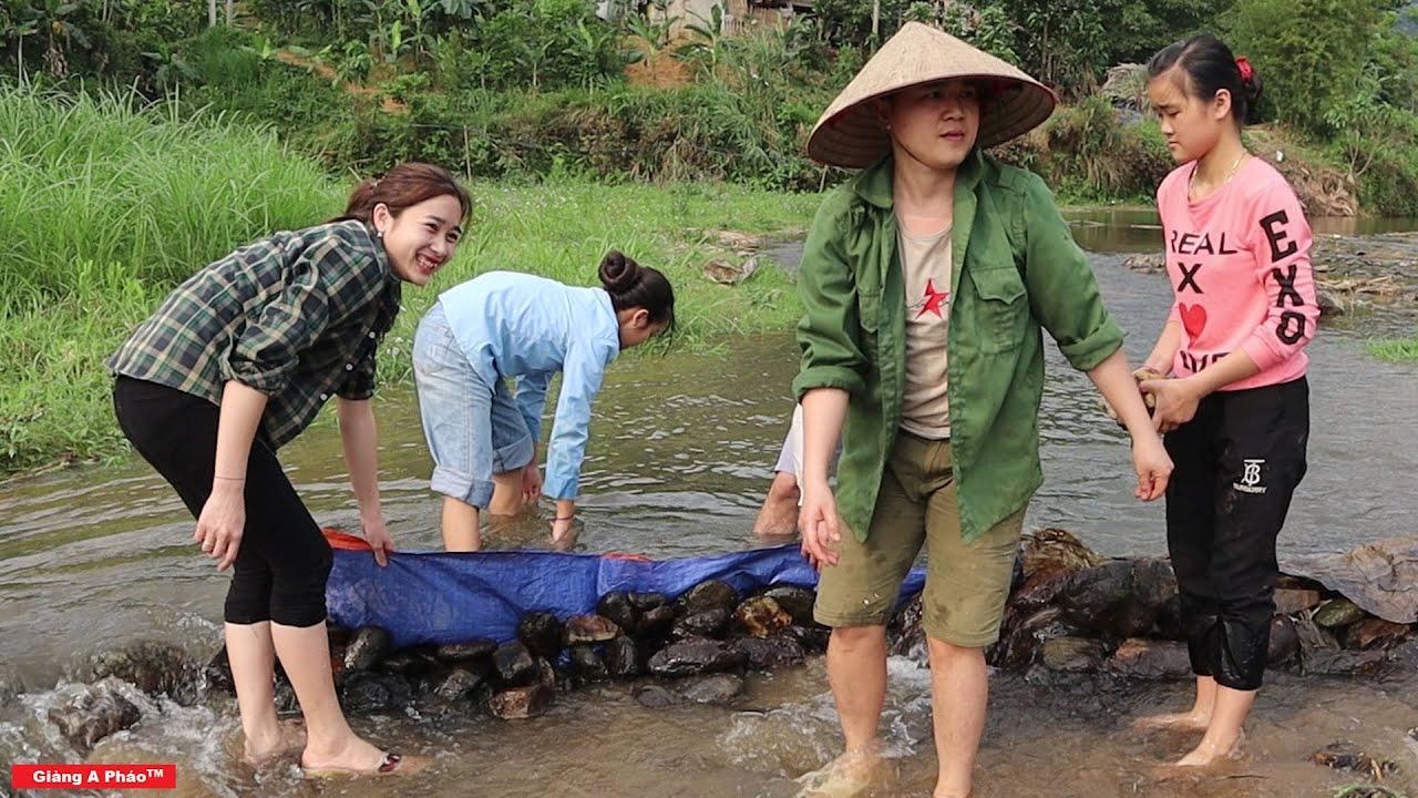 Không phải ai cũng dám động vào và đây là lí do - Cả làng kéo nhau ra suối bắt cá