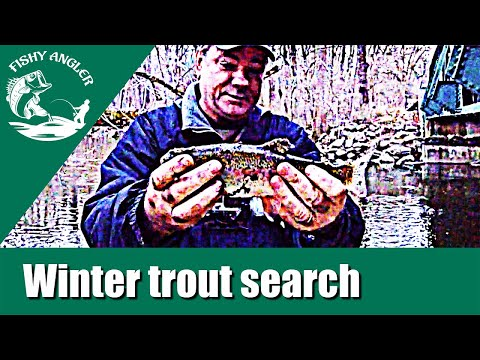 Winter Trout Search. White Clay Creek, Fishing Delaware