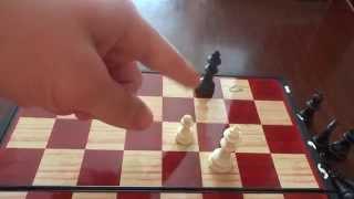 Как быстро научиться играть в шахматы:Урок 5 Эндшпиль(часть1)
