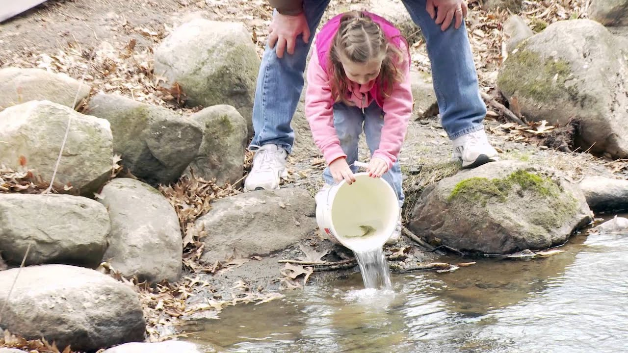 Saratoga spa state park 39 s fish stocking event is april 3 for Nd game and fish stocking report