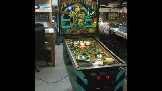 #375 Gottlieb AMAZON HUNT Pinball Machine -Nicest One You