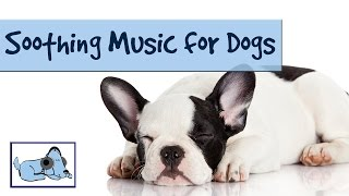 Improve Your Dog's Behaviour With Music. Calming, Soothing Music For Behavioural Problems.