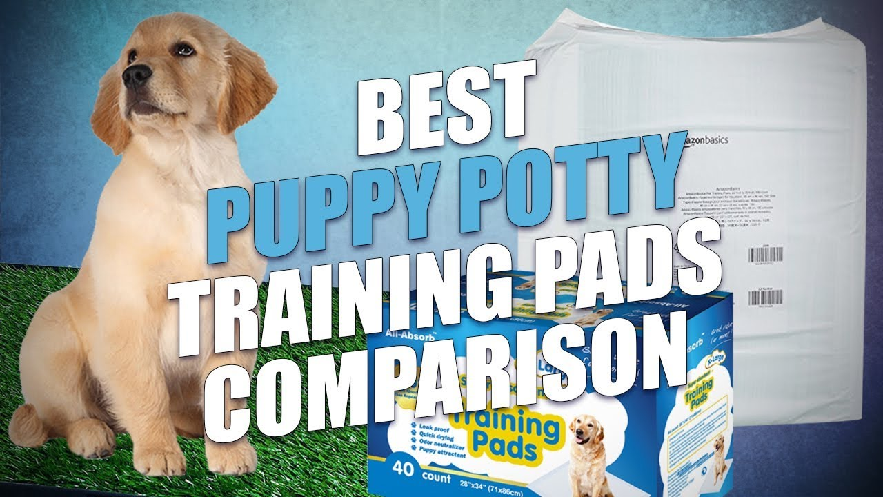 Best Puppy Potty Training Pads Review And Testing 2018