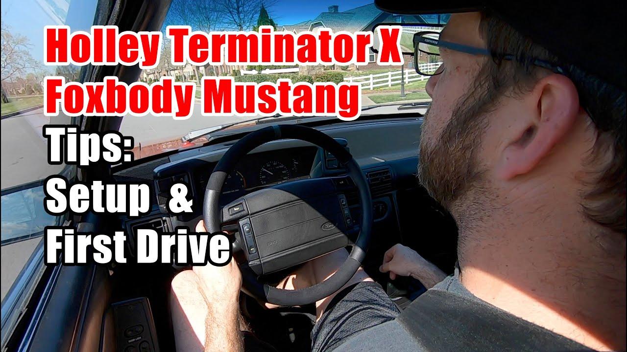 Terminator X Mustang