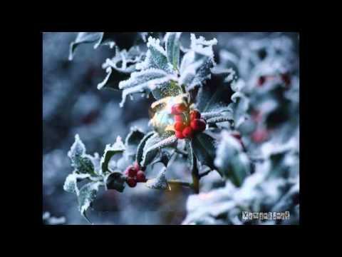 Tuyết Rơi Đêm Giáng Sinh - TPGH
