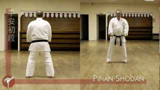Pinan Shodan kata (Wado Ryu) — front and rear view