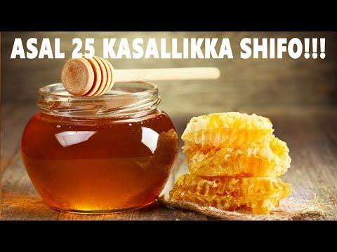 Асал 25 Касалликка Шифо