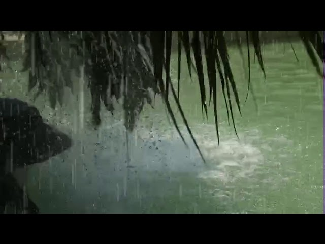 Waterfall & rain at Manas resort with petting zoo
