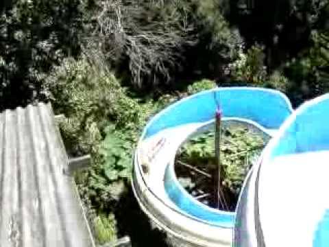 O Magnata Na Lagoa Azul Guarulhos Pt2 Youtube