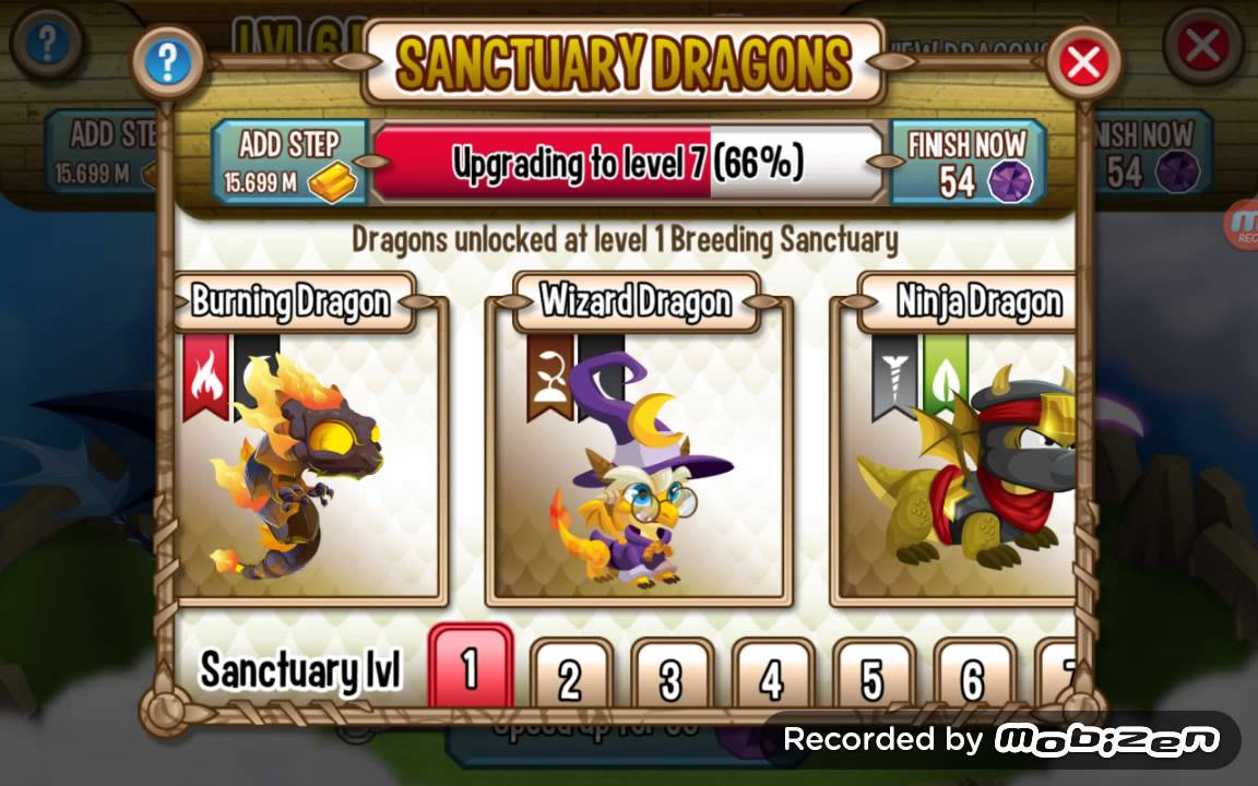 how to breed wizard dragon in dragon city youtube