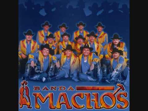 las habas BANDA MACHOS