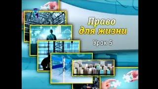 видео Договор перевозки
