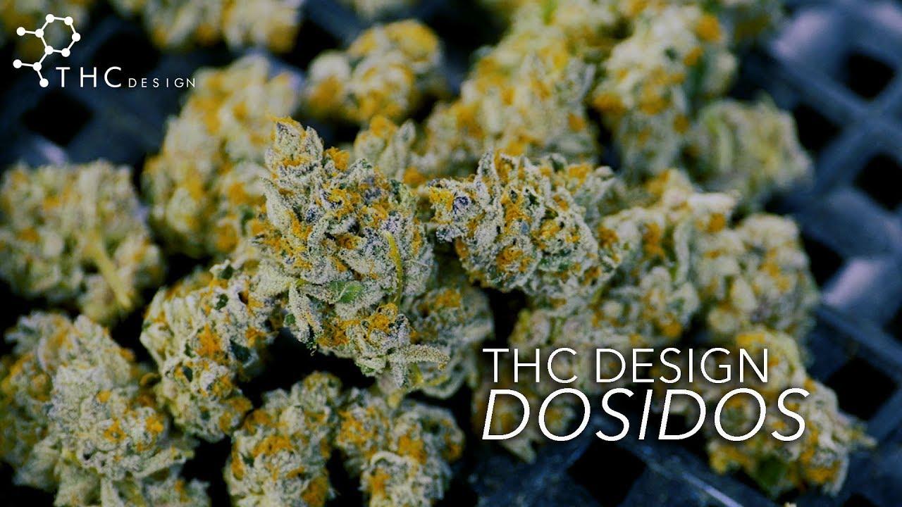 THC Design : DOSIDOS