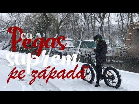 Cu Pegas Suprem pe zăpadă - Cavaleria.ro