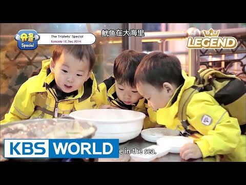 The Return of Superman - The Triplets Special Ep.12 [ENG/中文字幕/2017.07.28]