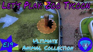 China Lucky Expansion - Zoo Tycoon: Ultimate Animal Collection | Let