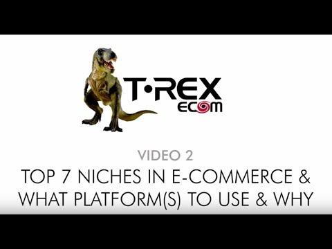 Top 7 eCommerce Niches in eCommerce + Top eCommerce Platforms