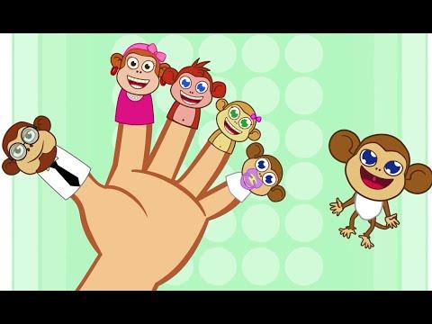 Fingers Family et les 5 petits singes  - comptine pour apprendre l'anglais avec les P'tits z'amis