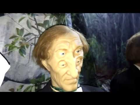 Museum optical illusions, a giant house, Bringing Down the Houseиз YouTube · Длительность: 24 мин33 с  · Просмотры: более 496000 · отправлено: 27.04.2015 · кем отправлено: The first educational TV channel