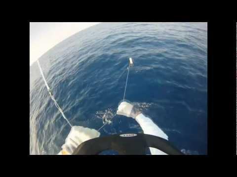 Kona Fishing Charters Hawaii
