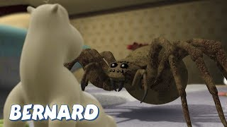 Bernard Bear   The Moth AND MORE   30 min Compilation   Cartoons for Children