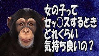 人工知能を持ったチンパンジーの会話が下ネタばかりだった 【chimbot】 thumbnail