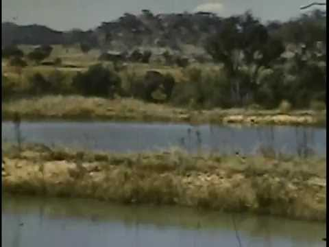 Life In Rhodesia