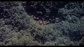 Дерсу Узала (Uzala der Kirgise) (Dersu Uzala) (Dersou Ouzala) (Trailer)