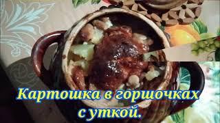 Блюдо в горшочках жаркое из утки Отличный рецепт