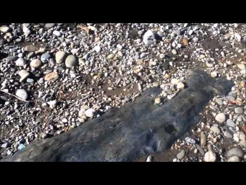 LOST RIVER GOLD SEARCHING NEW DIGGING TERRITORY ON TVA HEADWATERS IN WESTERN NORTH CAROLINA